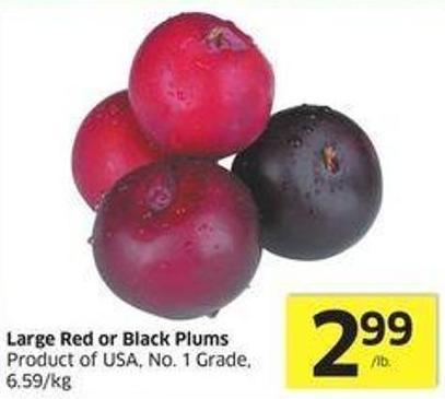 Large Red or Black Plums Product of USA - No. 1 Grade - 6.59/kg
