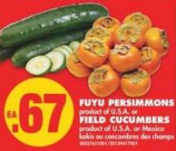 Fuyu Persimmons or Field Cucumbers