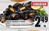 Fresh Live Cultivated P.e.i. Mussels 55½/100 g