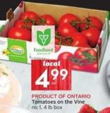 Tomatoes On The Vine Product Of Ontario