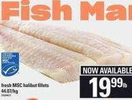 Fresh Msc Halibut Fillets