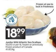Jumbo Wild Atlantic Sea Scallops 10/20 Ct Per Lb - Frozen or Previously Frozen Product of Canada 41.87/kg