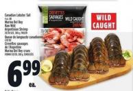Crevettes Canadian Lobster Tail 4 Oz. Or Marina Del Rey Raw Wild Argentinian Shrimp 20/30 Size - 300 G