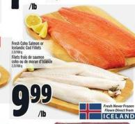 Fresh Coho Salmon Or Icelandic Cod Fillets