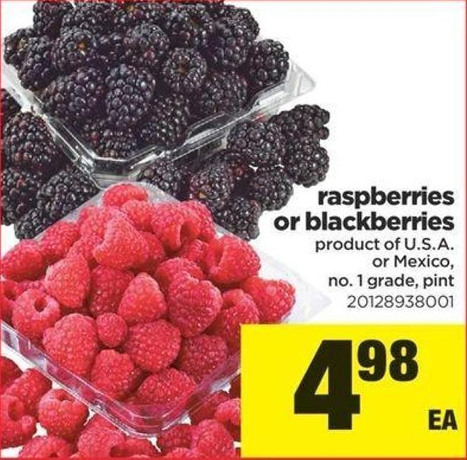 Raspberries Or Blackberries