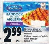 Bluewater Salmon Or Haddock Grilled Fillets