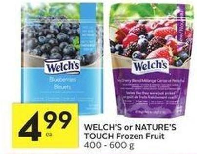 Welch's or Nature's Touch Frozen Fruit