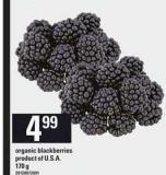 Organic Blackberries - 170 g