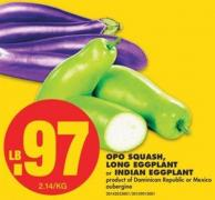 Opo Squash - Long Eggplant Or Indian Eggplant