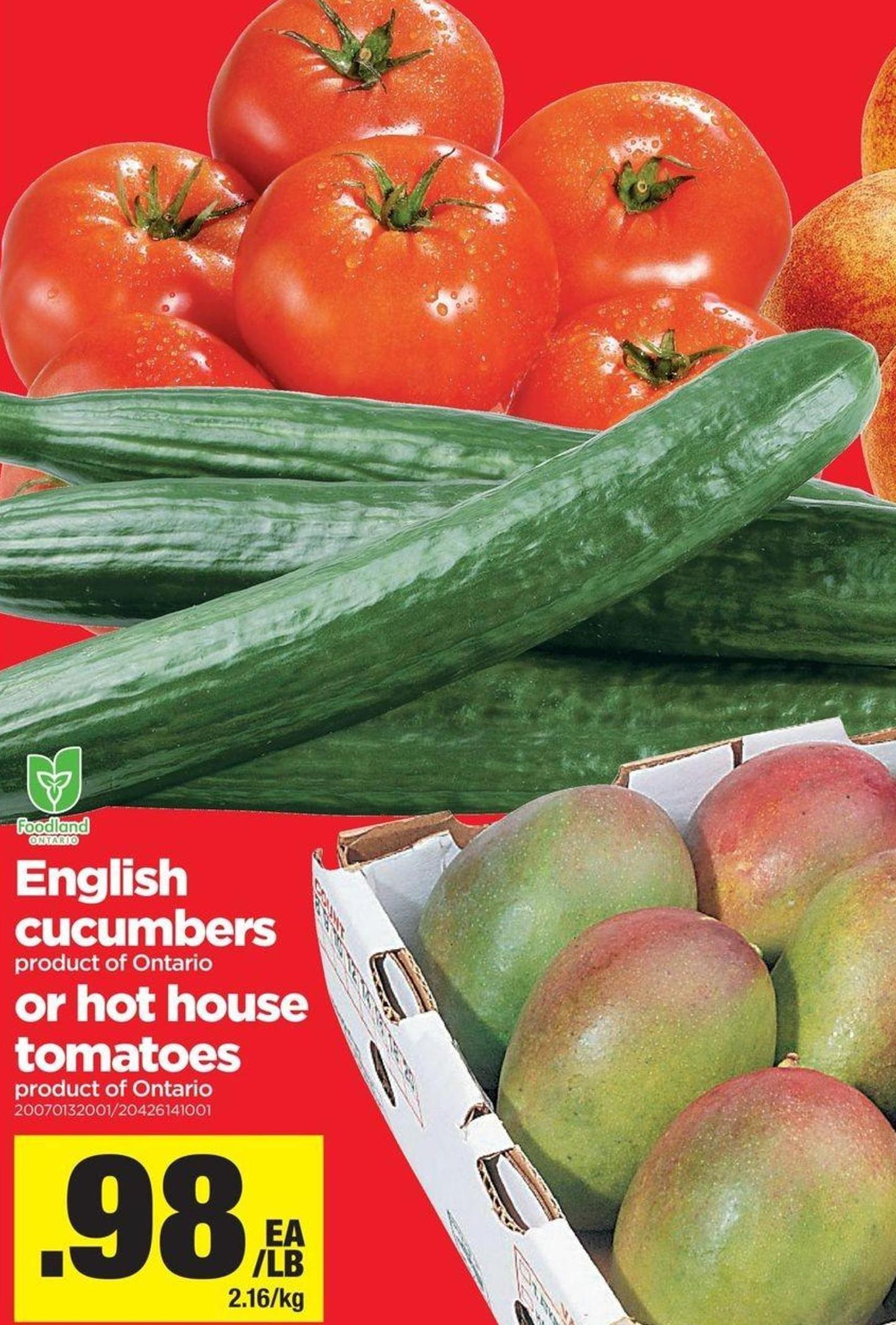 English Cucumbers Or Hot House Tomatoes