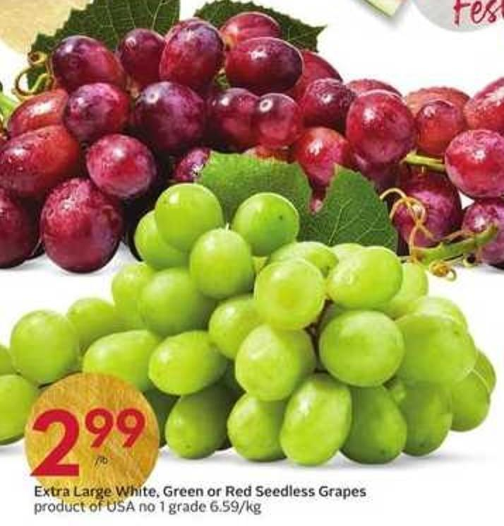 Extra Large White - Green or Red Seedless Grapes