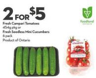 Fresh Campari Tomatoes 454g Pkg or Fresh Seedless Mini Cucumbers 6 Pack
