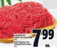 Qu'appelle Fresh Organic Lean Ground Beef