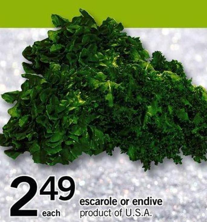 Escarole Or Endive