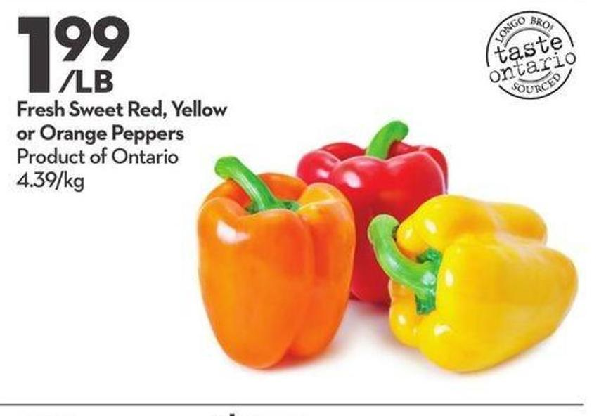Fresh Sweet Red - Yellow or Orange Peppers