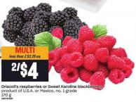 Driscoll's Raspberries Or Sweet Karoline Blackberries - 170 G