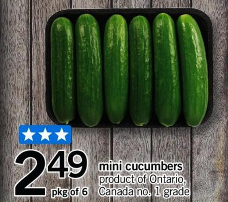 Mini Cucumbers - Pkg Of 6