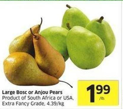 Large Bosc or Anjou Pears Product of South Africa or USA - Extra Fancy Grade - 4.39/kg
