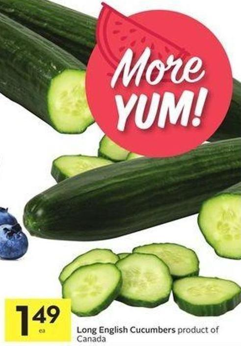Long English Cucumbers Product of Canada