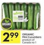 Organic Mini Cucumbers Product of Canada No 1