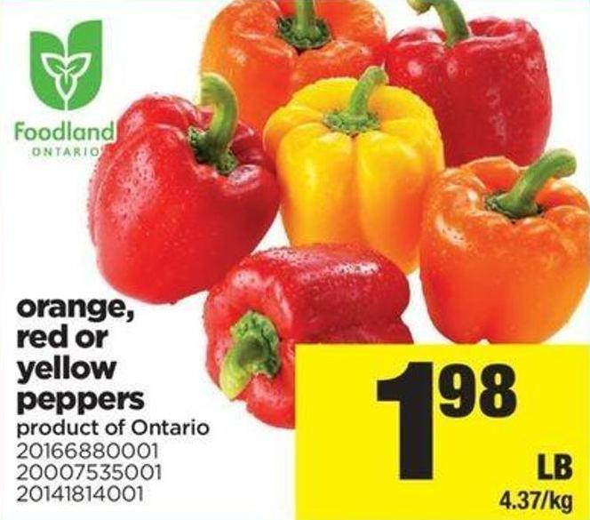 Orange - Red Or Yellow Peppers
