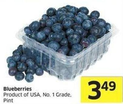 Blueberries Product of USA - No. 1 Grade - Pint