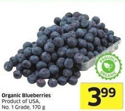 Organic Blueberries Product of USA - No. 1 Grade - 170 g