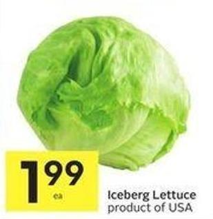 Iceberg Lettuce Product of USA
