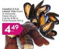 Canadian 2-3 Oz Lobster Tails Frozen
