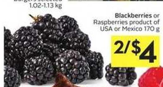 Blackberries or Raspberries
