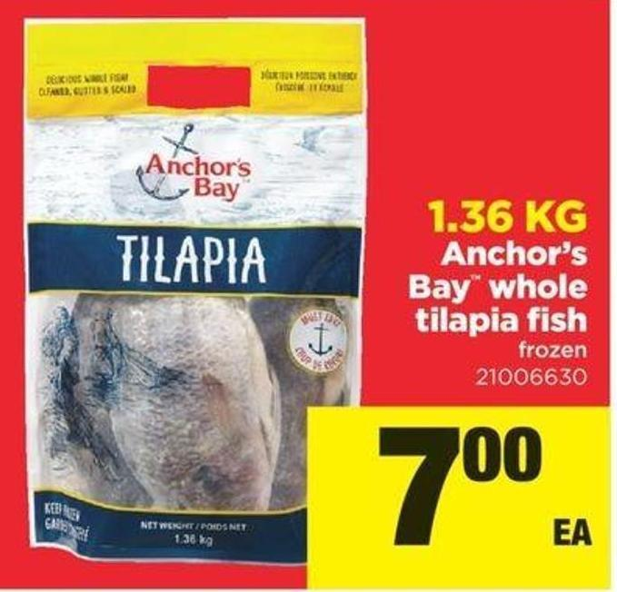 Anchor's Bay Whole Tilapia Fish - 1.36 Kg
