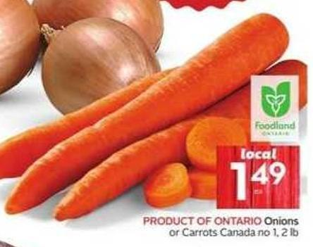 Product Of Ontario Onions