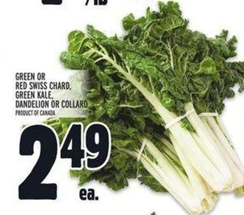 Green or Red Swiss Chard Green Kale - Dandelion or Collard