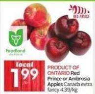 Red Prince or Ambrosia Apples