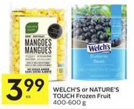 Welch's or Nature's Touch Frozen Fruit 400 - 600 g