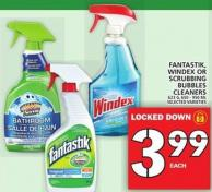 Fantastik - Windex Or Scrubbing Bubbles Cleaners