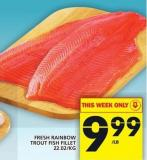 Fresh Rainbow Trout Fish Fillet
