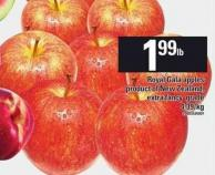 Royal Gala Apples