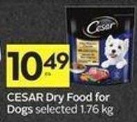 Cesar Dry Food For Dogs
