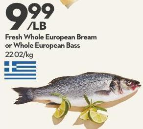 Fresh Whole European Bream or Whole European Bass
