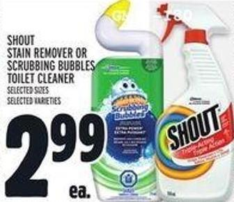 Shout Stain Remover Or Scrubbing Bubbles Toilet Cleaner