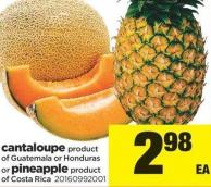 Cantaloupe Or Pineapple