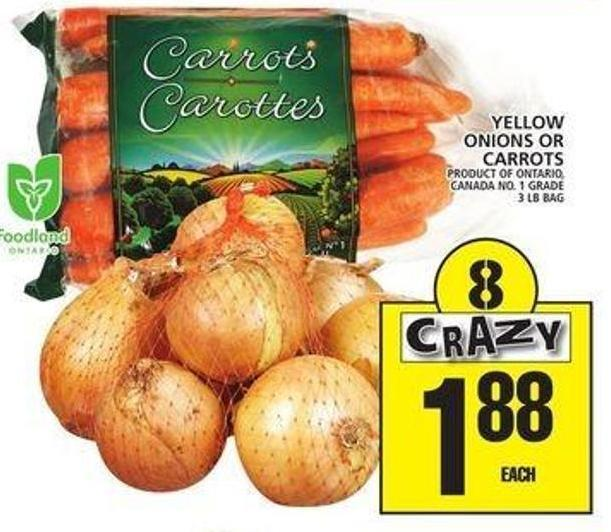 Yellow Onions Or Carrots