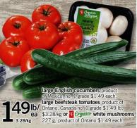 Large English Cucumbers  - Large Beefsteak Tomatoes Or White Mushrooms - 227