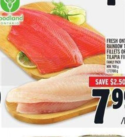 Ontario Rainbow Trout Fillets Or Tilapia Fillets