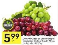 Organic Red or Green Grapes Product of Chile or South Africa No 1 Grade