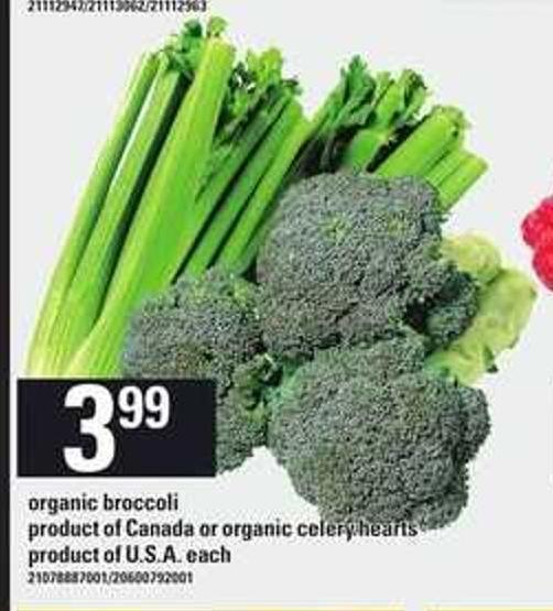 Organic Broccoli Or Organic Celery Hearts