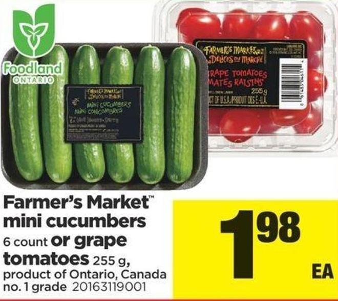 Farmer's Market Mini Cucumbers - 6 Count Or Grape Tomatoes - 255 G