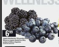 Organic Blackberries - 170 g or Or Organic Blueberries - 340 g