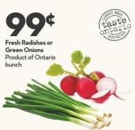 Fresh Radishes or  Green Onions